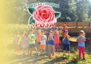 ДГ Роза - С. Желю Войвода